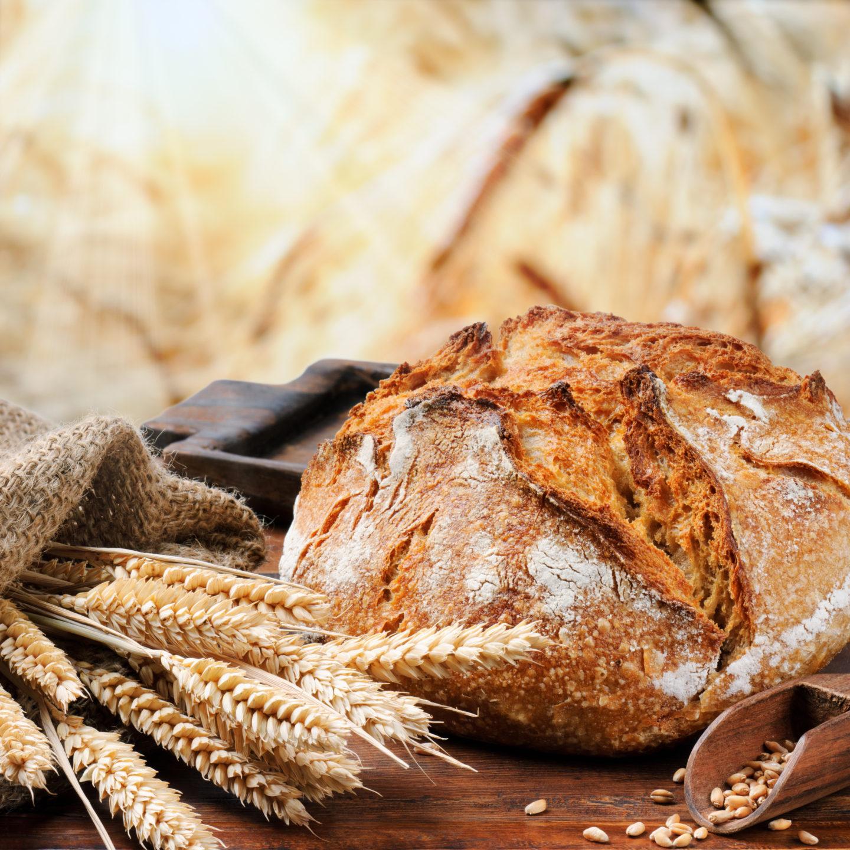 Бездрожжевой хлеб — действительно ли он без дрожжей?