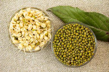Пророщенные зерна обладают очень разным эффектом