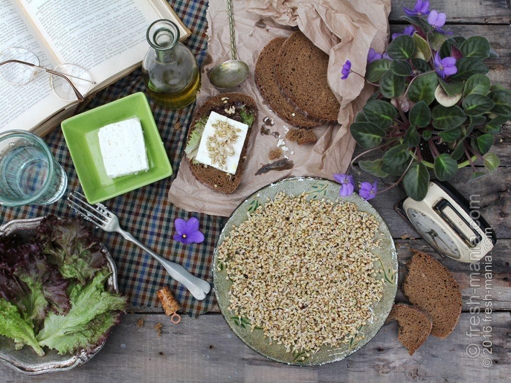 Пророщенная зелёная гречка не только полезна, но и вкусна