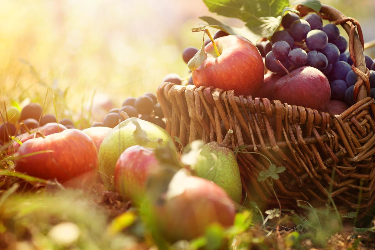 Как питаться осенью и на что обратить внимание в рационе