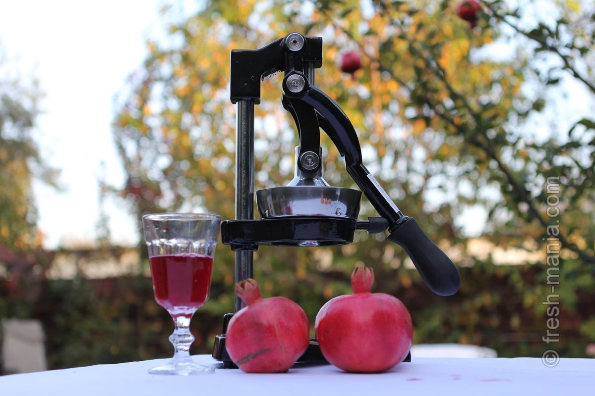 Соковыжималки для цитрусовых: делаем лето в стакане!