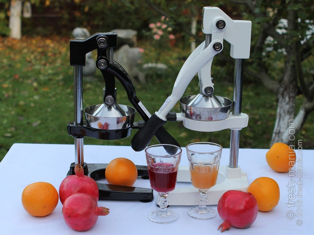 Свежеприготовленные соки из цитрусовых