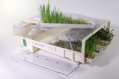 Домашний проращиватель семян