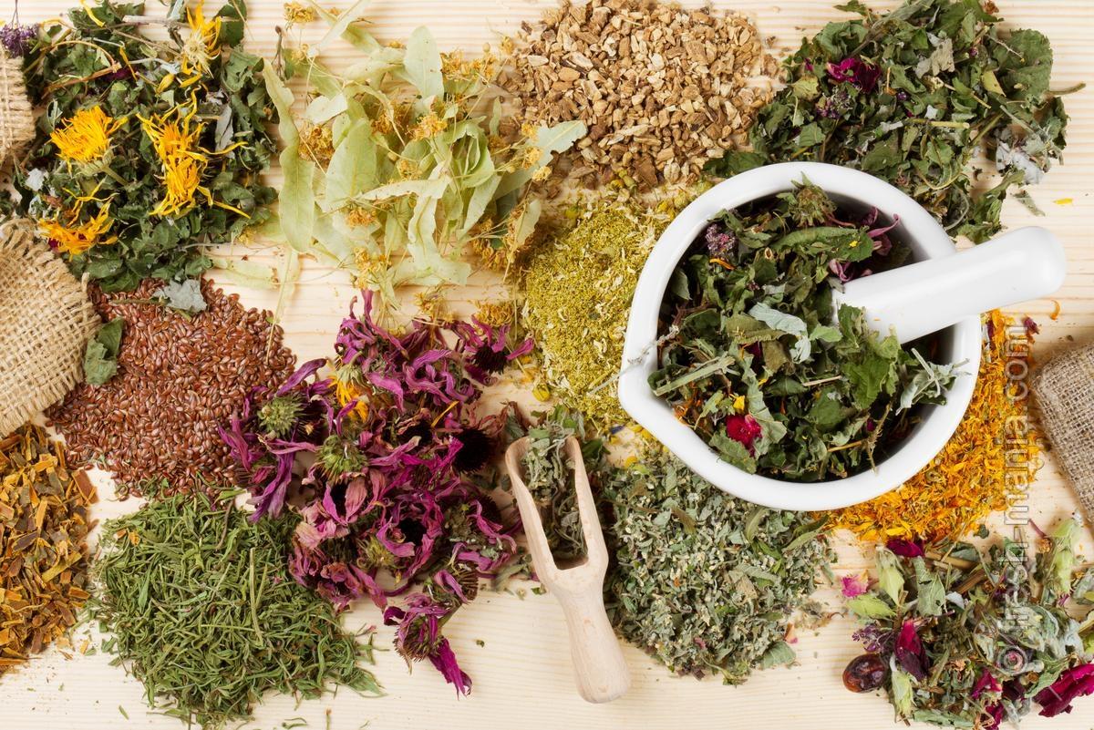 Очистка от паразитов: правильное питание + лекарственные травы
