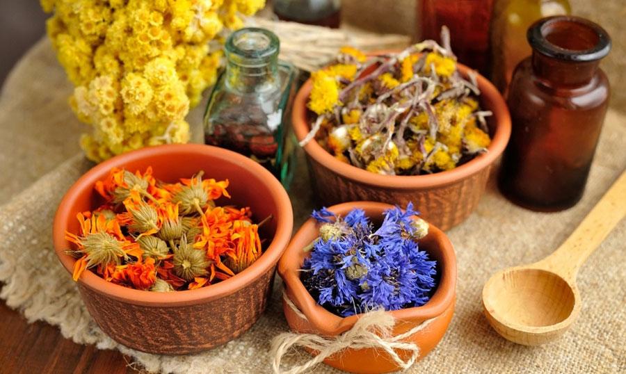 Как сушить цвет весенних растений