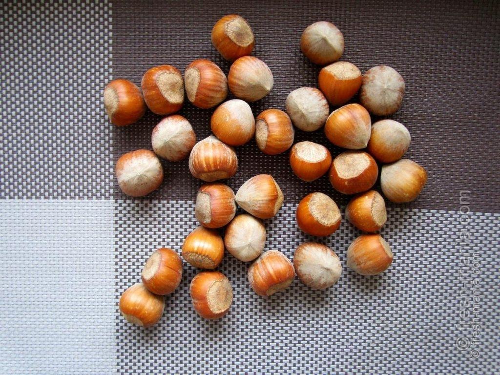 Что полезного в лесных орехах