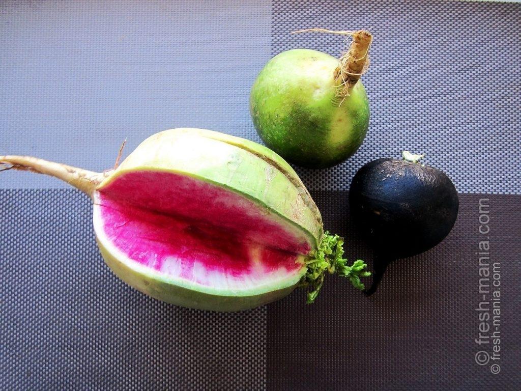 Разнообразие овоща