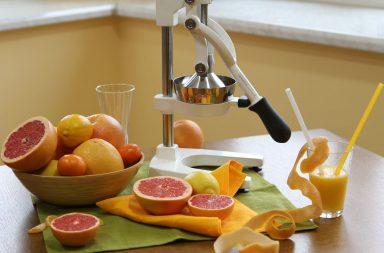 citrus press Sana