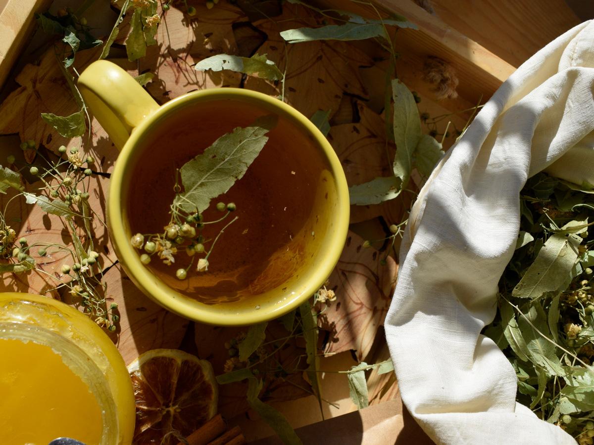 Липовый цвет – ароматная фитотерапия
