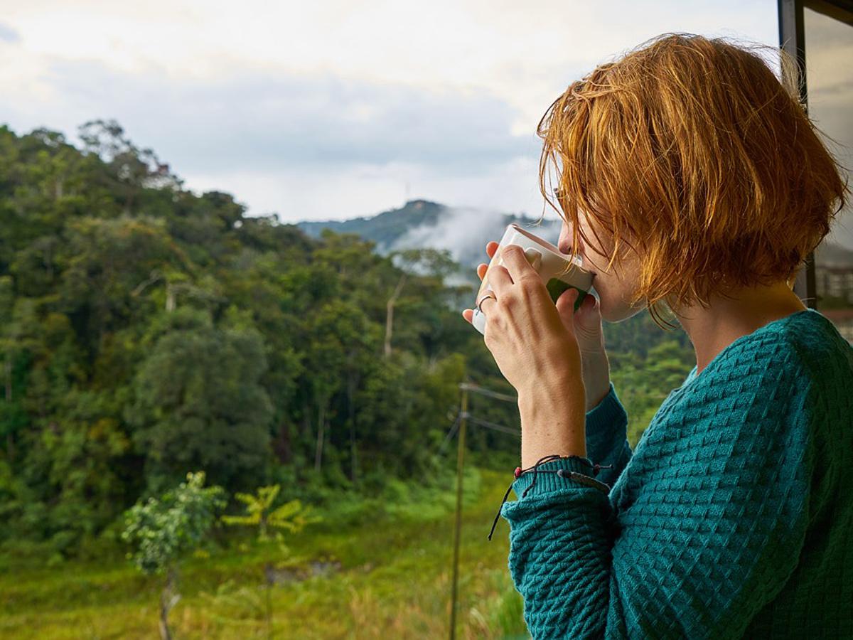 Альтернатива кофе: 8 натуральных продуктов