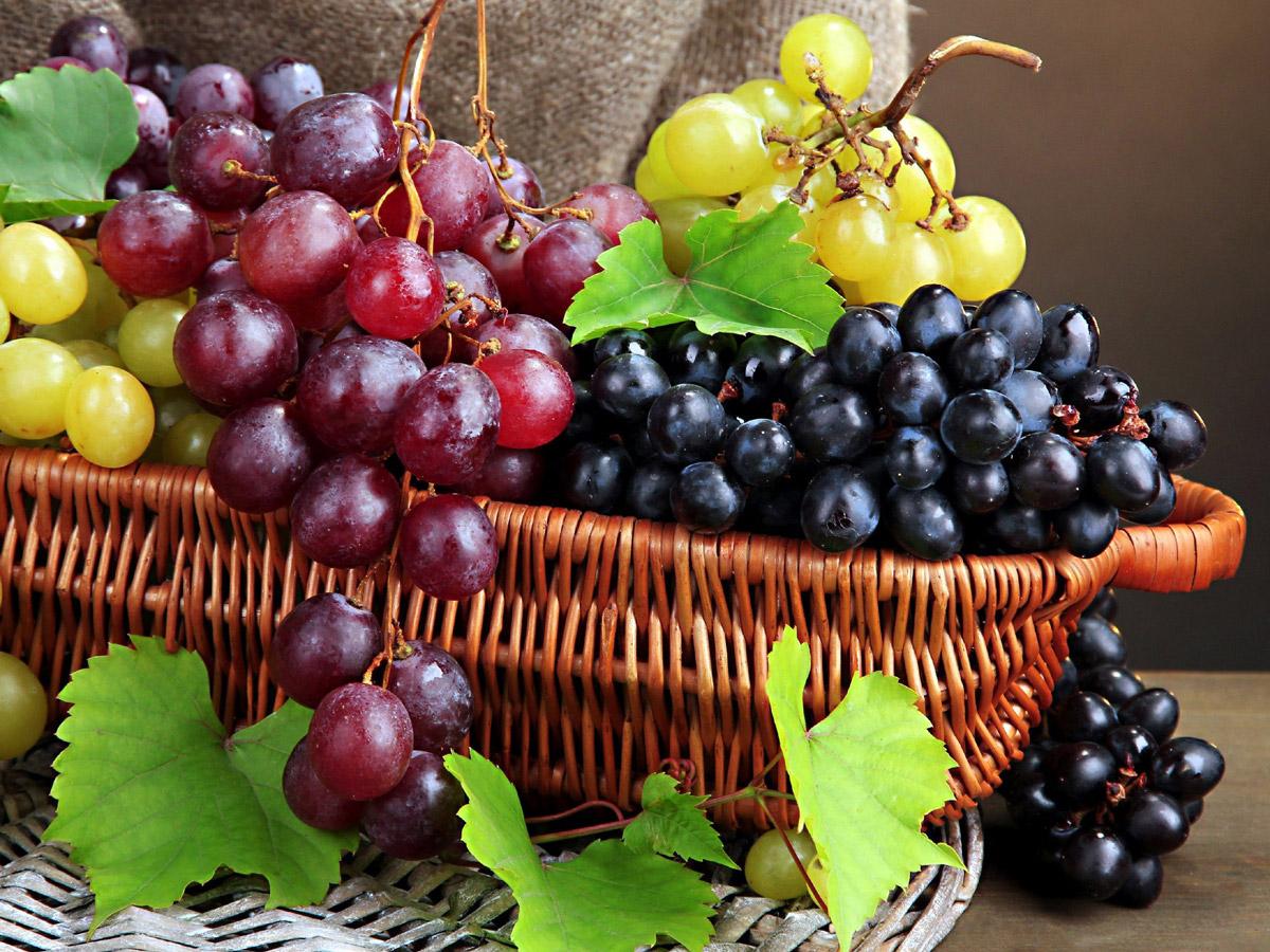 Полезные свойства винограда для ума, красоты и здоровья