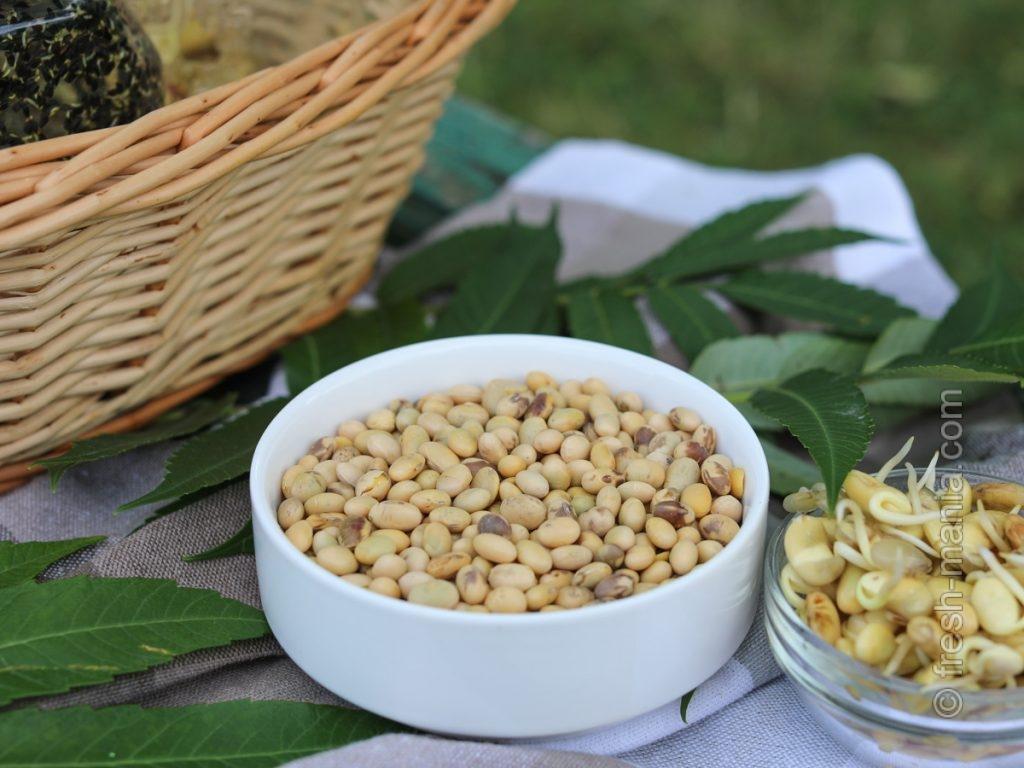 Соя – источник белка, витаминов и минералов