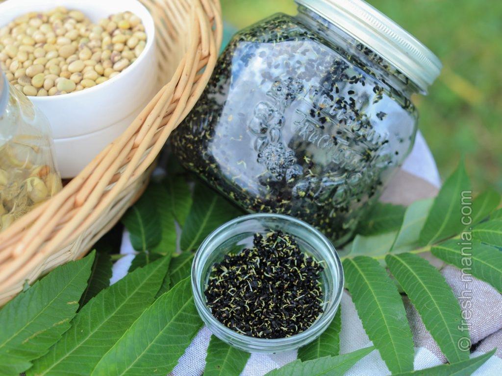В крошечных семечках тмина – огромный потенциал