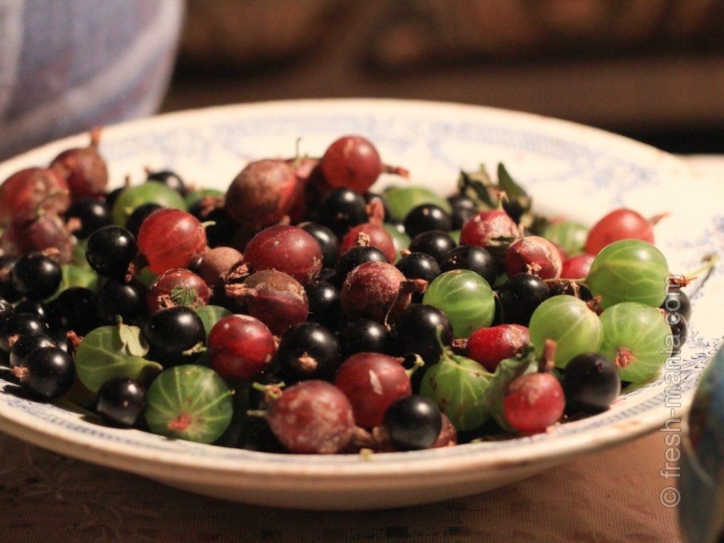 Сок крыжовника сочетается почти со всеми соками из фруктов и ягод из его широт